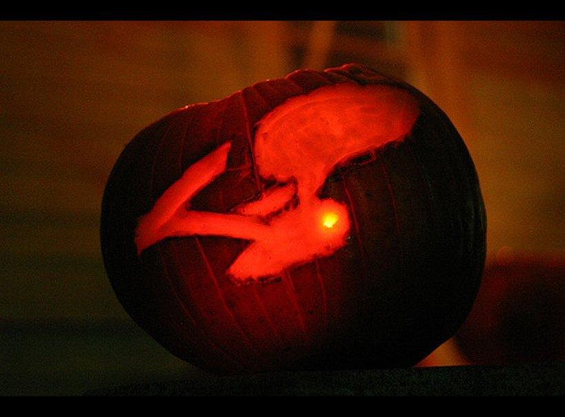 2008-10-31-Trek_Pumpkin.jpg
