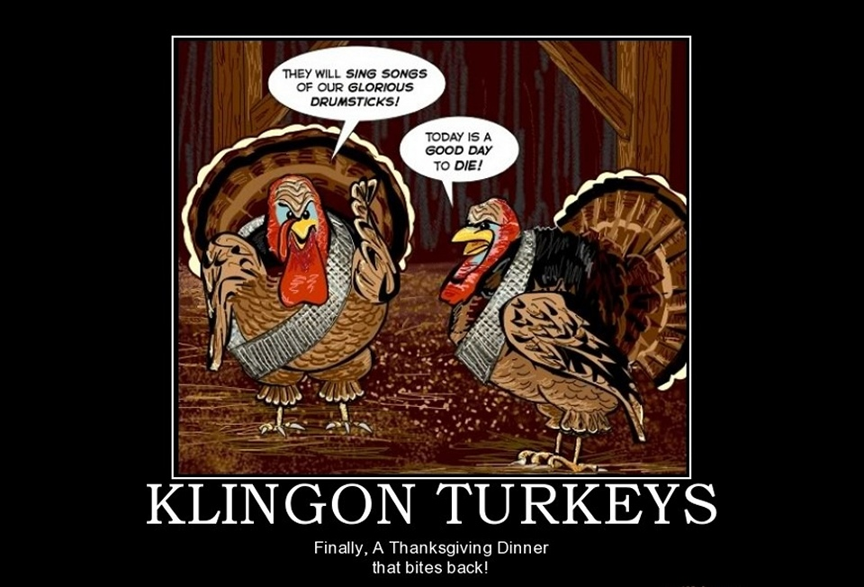 2010-11-25_Turkeys