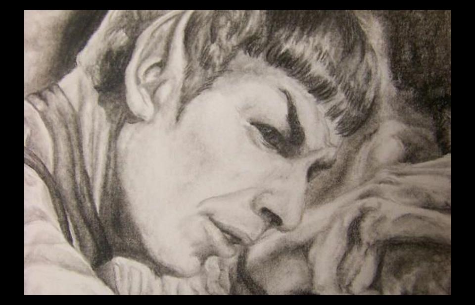 2010-11-30_Spock_art