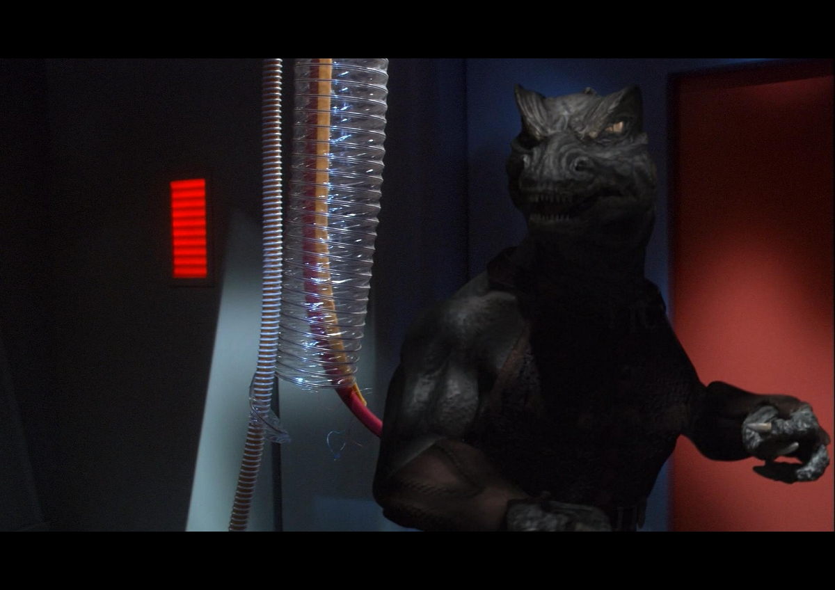 Daily Pic # 2229, New Gorn